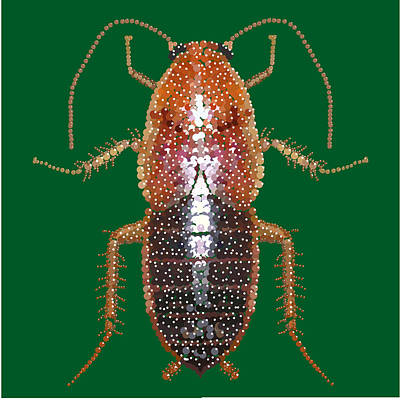 Digital Art - Bedazzled Roach II by R  Allen Swezey