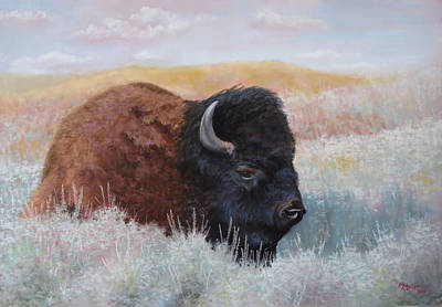 Bedded Down On The Rolling Prairie Original