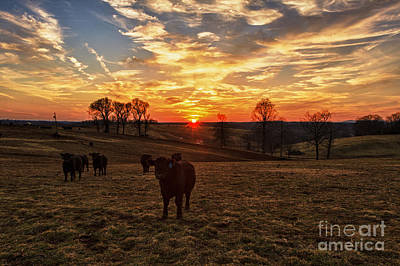 Photograph - Bedford County Sunset by Mark East