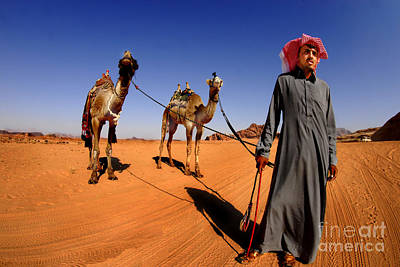 Jordanian Photograph - Bedouin And Camels by Dan Yeger