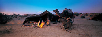 Camel Photograph - Bedouin Camp, Tunisia, Africa by Panoramic Images