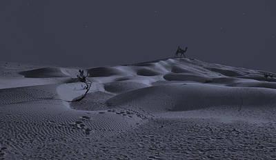 Bedouin Night Original