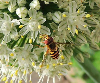 Bee Beautiful Art Print