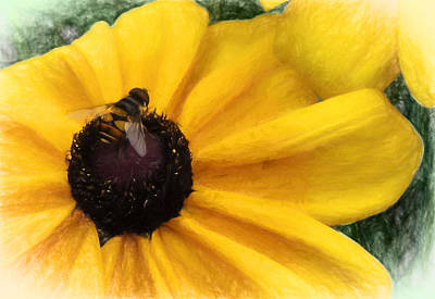 Digital Art - Bee Happy by Terry Cork