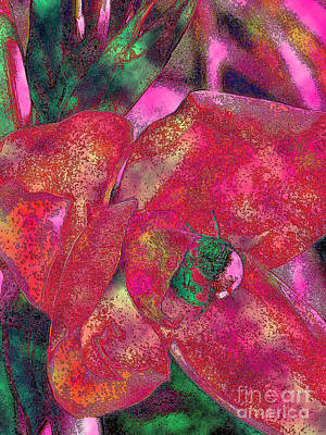 Canna Photograph - Bee Leeve 5 by Diane DiMarco