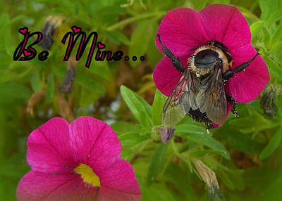 Photograph - Bee Mine Card by Heidi Manly