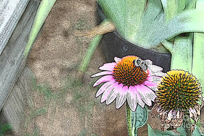 Digital Art - Bee On Cone Flower by Lesa Fine