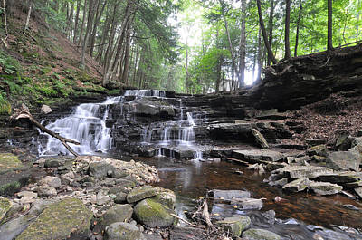 Photograph - Beecher Creek Falls Edinburg Ny by David Seguin