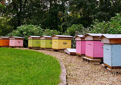 Beehives Of The Grande Jatte Art Print