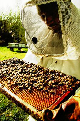 Photograph - Beekeeper by Selke Boris