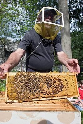 Beekeeping Class Art Print