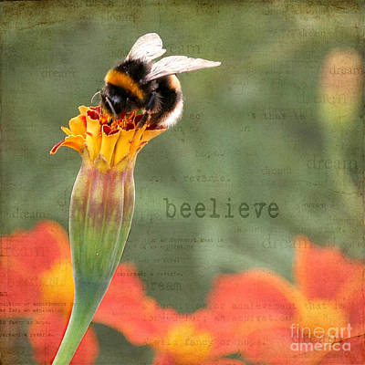 Photograph - Beelieve by Diane Enright
