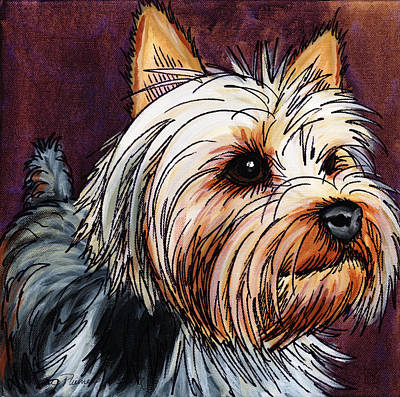 Yorkshire Terrier Wall Art - Painting - Beemer by Katherine Plumer