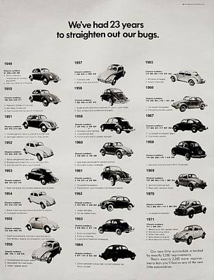 Photograph - Beetle Evolution by Benjamin Yeager