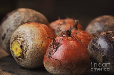 Beverly Brown Fashion Rights Managed Images - Beets Royalty-Free Image by Terry Rowe