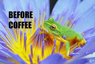 Photograph - Before Coffee by David Clode