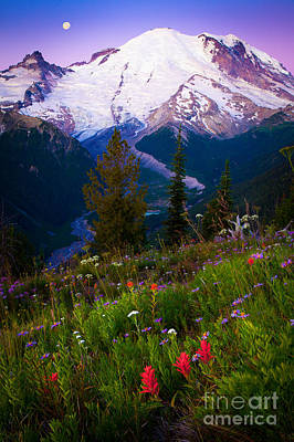 Before Dawn At Mount Rainier Art Print by Inge Johnsson
