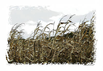 Illinois Farm Land Photograph - Before The Harvest by Londie Benson