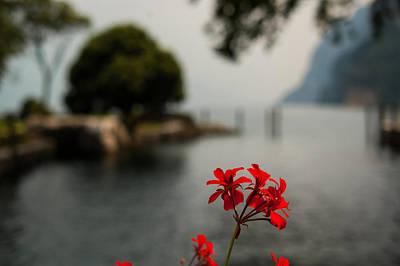 Photograph - Before The Mists Come by Alex Lapidus
