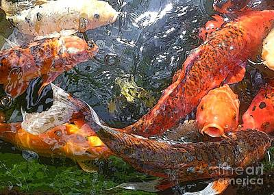 Photograph - Begging Koi 1 by Barbie Corbett-Newmin