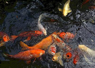 Photograph - Begging Koi 3 by Barbie Corbett-Newmin