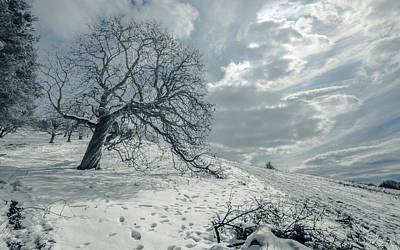 Snow Scene Landscape Photograph - Begin The Melting Procedure by Chris Fletcher