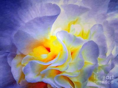 Begonias Digital Art - Begonia Shadows II Painting by Lianne Schneider