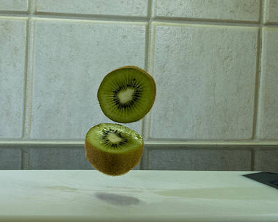 Photograph - Beheaded Kiwi by Bill Barber