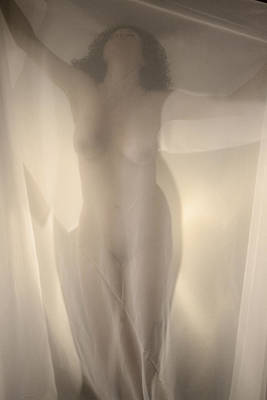 Photograph - Behind Curtain Nude by Ron Morecraft