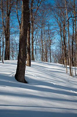 Photograph - Behind Mccauley Mountain by David Patterson