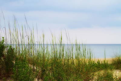 Seaside Photograph - Behind The Dune Grasses by Cathy Lindsey