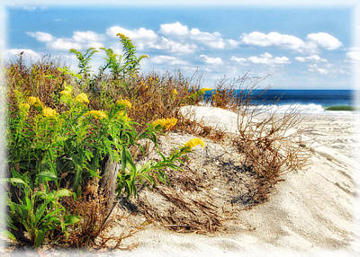 Photograph - Behind The Dunes by Carolyn Derstine