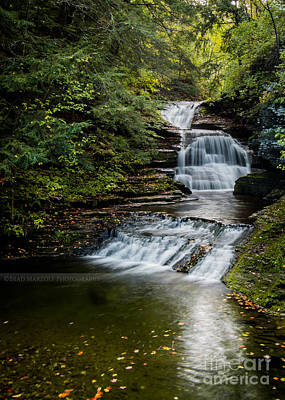 Photograph - Behind The Mill Treman Park by Brad Marzolf Photography