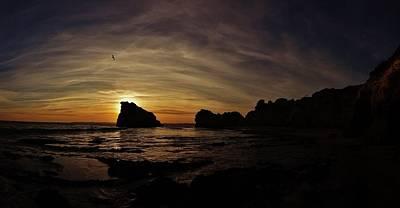 Bird Photograph - Behind The Rock by Sarah Pemberton