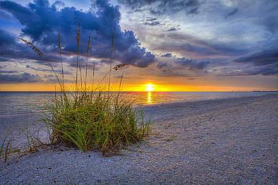 Photograph - Behind The Sea Grass by Sean Allen
