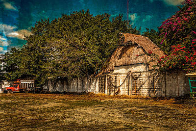 Photograph - Behind The Thach Cottage by Melinda Ledsome
