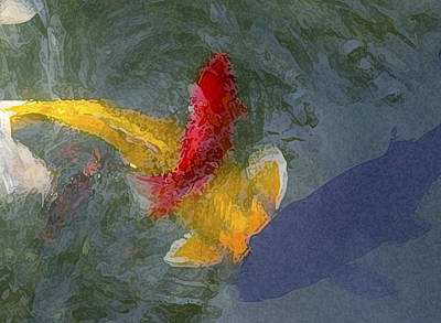 Being Koi 2 Print by Rich Franco