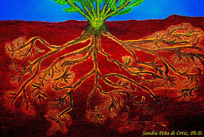Being Rooted And Grounded In My Good Soil Art Print by Sandra Pena de Ortiz