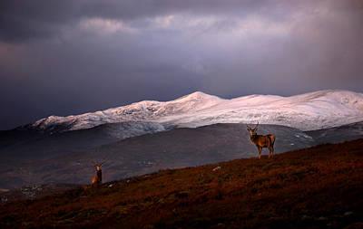 Photograph - Beinn A Bha Ach Ard by Gavin Macrae