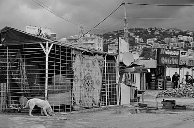 Photograph - Beirut by Steven Richman