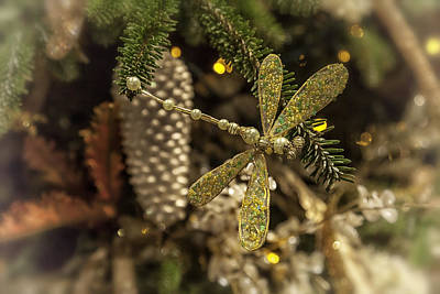 Dragonfly Ornament Photograph - Bejeweled Pearl Dragonfly by Lynn Palmer