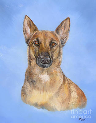 Belgian Malinois Original by Gail Dolphin