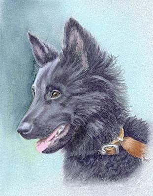 Belgian Sheepdog Puppy Art Print