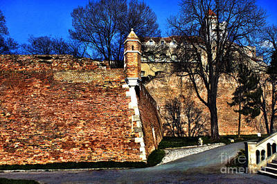 Fortress Mixed Media - Belgrade Fortress by Milan Karadzic