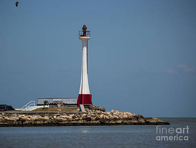 Photograph - Belize Lighthouse by Suzanne Luft