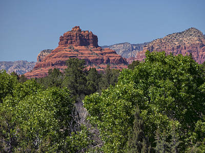 Photograph - Bell Rock Sedona With Trees by Marianne Campolongo