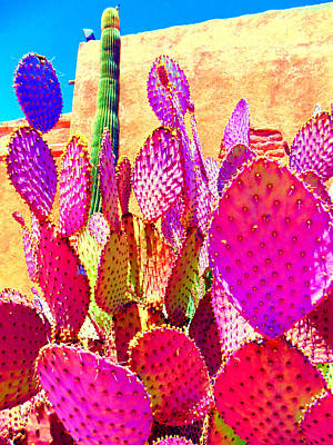 Mixed Media - Bella Tucson by Michelle Dallocchio