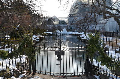 Photograph - Belle Isle Conservatory Pond 2 by Randy J Heath