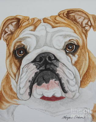 Dog Painting - Belle The Bulldog by Megan Cohen