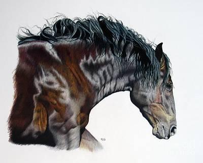 Bellus Equus Art Print